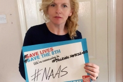 National Canvass Day:Naas